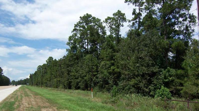Raw Land for Residential Development